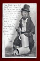 Singe Humanisé En Poivrot : Chope De Bière - 2 SCANS - Beer Monkey - Wien Heliogravure Rüger 1904 - Singes