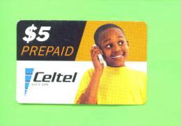 ZAMBIA  -  Remote Phonecard As Scan - Zambia
