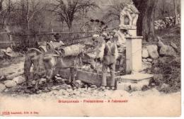 Briançonnais - Freissinières -a L ' Abreuvoir - - Mestieri