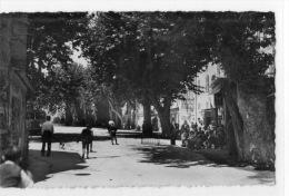 VAR 83 CUERS PLACE DU GENERAL DE GAULLE - Cuers