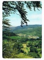 L1309   DILLINGEN : La Vallee De La Sure - Postcards