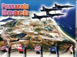 (110) USA - Pensacola And Blue Birds Aviation Squadron - Aerei