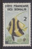 French Somali Coast  276    *  FAUNA  FISH - French Somali Coast (1894-1967)