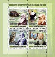 GUINEA BISSAU CHARLES DARWIN PANDA BUTTERFLY TURTLE OWL S/S MNH C7 - Unclassified