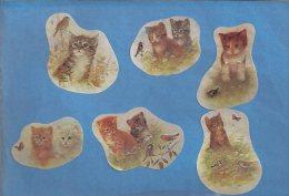 Manualidades, Cartulina GATOS, CATS - Cromos
