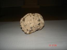 Marcassite - Mineralien