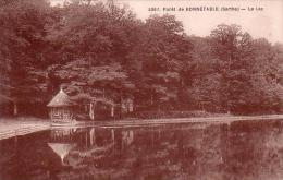C 9199  - Foret De BONNETABLE - 72 - Le Lac - - Bonnetable