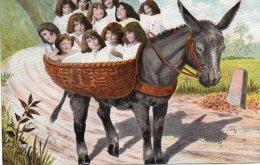 CPA Ane Avec Enfants  Enoyée Tampon Salins Jura 1904 Voir Scans - Donkeys