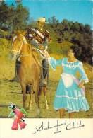 Amérique > Chili   Saludos De CHILE  Brindis Al Huaso (cheval Horse )  *PRIX FIXE - Chili