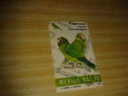 Timbre Mexique Perroquet (1,30) - Mexique