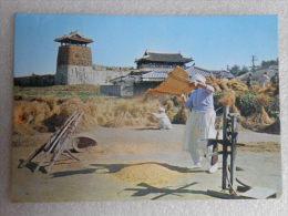 CP COREE : Koréa - Scène Paysanne La Récolte Du Riz - Forteresse  De HWASEONG 1982 A Confirmer - Corea Del Sud