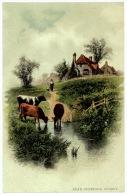 Rural Scene, Cottage, Cattle Grazing, Near Dunsfold, Surrey - Surrey