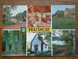 VRAEGHEIDE Anno 19?? ( Zie Foto Voor Details ) !! - Brecht