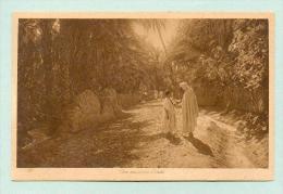 CPA  ALGÉRIE  -  157  Une Rue Dans L´oasis  ( Lehnert & Landrock ) - Algeria