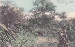 Cote D'Ivoire Ivory Coast Dabou Coin de Brousse 1912