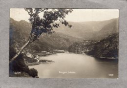 42702     Norvegia,  Bergen  -  Isdalen,  VG  1915 - Norvegia