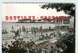 VOLLEYBALL - Partie De Volley Ball Sur La Plage Du Scudo à Ajaccio - Dos Scanné - Volleyball