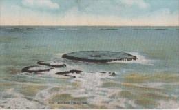 ..BERMUDES ( The Boilers ) - Bermudes