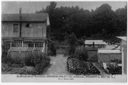 Nogent Le Roi Eure Et Loir Pépinière Horticole Cheron Colin 1920 état Superbe - Andere Gemeenten