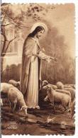 IL BUON PASTORE - Ed. EB - Nr.530 - Mm. 55x100 - E - A - Religione & Esoterismo