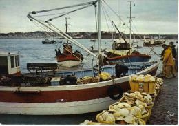 22 Erquy N°6957 Retour Des Coquilliers Gros Plan Pêcheurs Coquilles St Jacques Bateaux JOS - Erquy