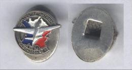 Insigne Ancien Ecole Nationale De L'Aviation Civile De Carcassonne - Boutonnière - Badges & Ribbons