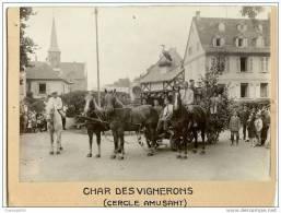 SUPERBE Photo Ancienne 17,5 X 11,5cm-Niederbronn Les Bains-fête Alsacienne-char Des Vignerons-photo Siegler - Places