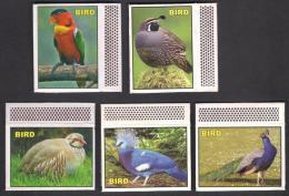 PAKISTAN MATCHBOX LABEL - Famous Birds Set Of 5, Very Fine - Boites D'allumettes - Etiquettes