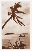 Islets Of The Mainland Near Nukualofa, Tonga - Pas Circulé, Teinte Jaunâtre - Tonga