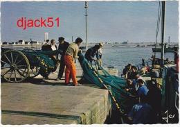 Départ Pour La Pêche Dans Un Port Du Pays Bigouden ( BRETAGNE ) - Pêche