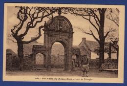 29 PLOMODIERN Ste Marie Du Ménez-Hom, Arc De Triomphe - Animée - Plomodiern