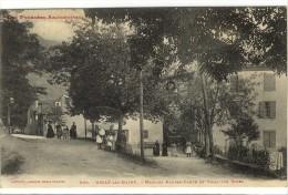 Carte Postale Ancienne Ussat Les Bains - Maisons Rousse Conte Et Villas Des Roses - Francia