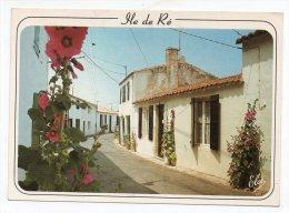 17 - Ile De Ré - Une Rue Typique De L´île De Ré Bien Fleurie - Ile De Ré