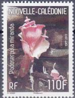 Nouvelle Calédonie Champignon  ** - Champignons