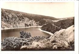CPSM ORBEY Lac Blanc  Les Hautes Vosges - Orbey