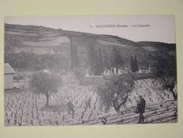 Roquebrun Le Cimetiere - France