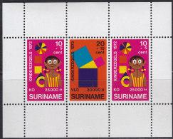 2334. Suriname, 1972, For The Child, Block, MH (*) - Surinam ... - 1975