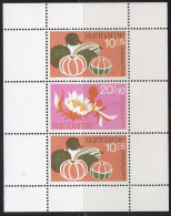 2347. Suriname, 1974, For The Child, Block, MH (*) - Surinam ... - 1975