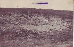 55  MARBOTTE. - (animé)  Cimetière - D5 215 - Francia