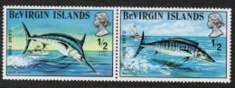 VIRGIN ISLANDS    Scott # 243**  VF MINT NH Pair - British Virgin Islands