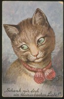 SIGNED A. THIELE OLD POSTCARD #06 DRESSED CAT CATS T.S.N. 710 - Thiele, Arthur