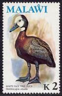 MALAWI BIRDS DUCK SC# 244 HIGH VALUE VF MNH SC CV$14- - Ducks