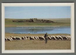 S9918 MONGOLIA ESTERNA LA STEPPA PASTORE PECORE Cartoline Dal Mondo De Agostini - Mongolia