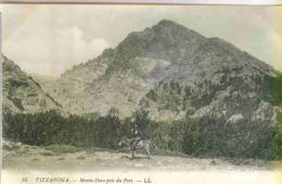 VIZZAVONA - HAMEAU DE VIVARIO (Haute-Corse) - Monte-Doro Pris Du Fort - Francia