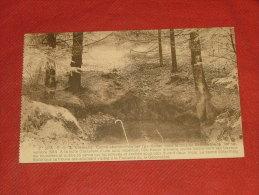 SPA  -  G. Q. G. Allemand  -  Canne Abandonnée Par L´ Ex-Kaiser Dans Le Bois De Berinzenne En 1918 - Spa