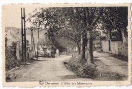 Daverdisse - L'allée Des Marronniers  édit : Constant Detroz Photo Dessart  Peu Commune - Daverdisse