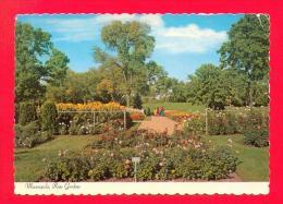 U.S.A.  MINNESOTA  -  MINNEAPOLIS  -  62183  Rose Gardens - Minneapolis