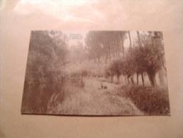 BC6-4-100 LC43 Wasseiges Paysage Sur La Méhaigne - Wasseiges