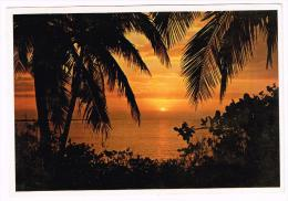 M168 Bahamas - A Lovely Tropical Sunset - Coucher Tramonto - Nice Stamps Timbres Francobolli / Viaggiata 1982 - Bahamas