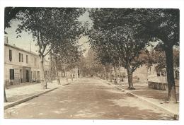Très Belle CPSM Raphèle (13) - Avenue D´Arles - Other Municipalities